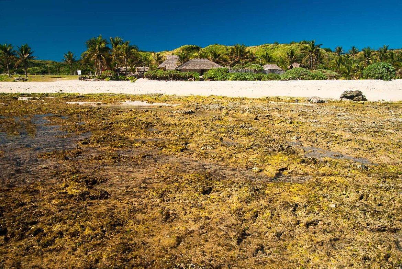 Casa Consuelo as seen from the reef