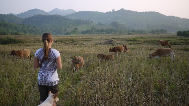 Hongsa, Laos
