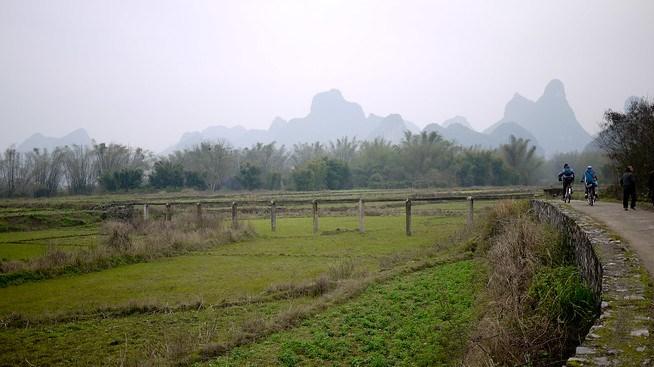 Rural rice paddy, Yangshuo China.
