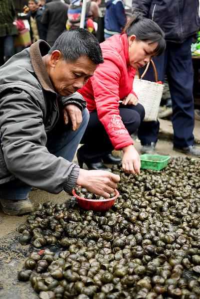 Snails at Fuli Market, China