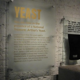 Yeast, A Guinness Ingredient