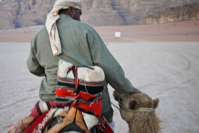 Shabula takes a tender, affectionate moment with his camel in Wadi Rum, Jordan