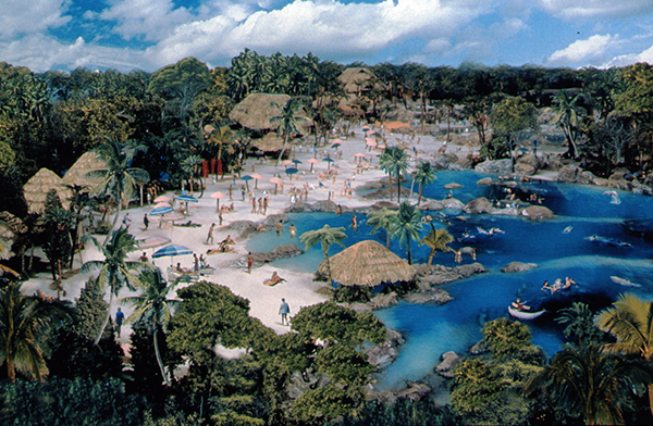 Discovery Cove, Orlando is having a flash sale saving $80 on the All-Inclusive Dolphin Swim!