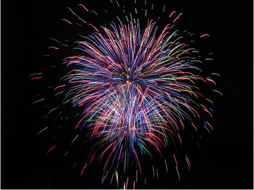 July 4th Fireworks At Seaworld Orlando Or Busch Gardens Tampa Bay And Dine All Day For Free!