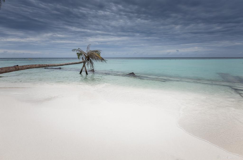 Đảo Maafushi - Maldives