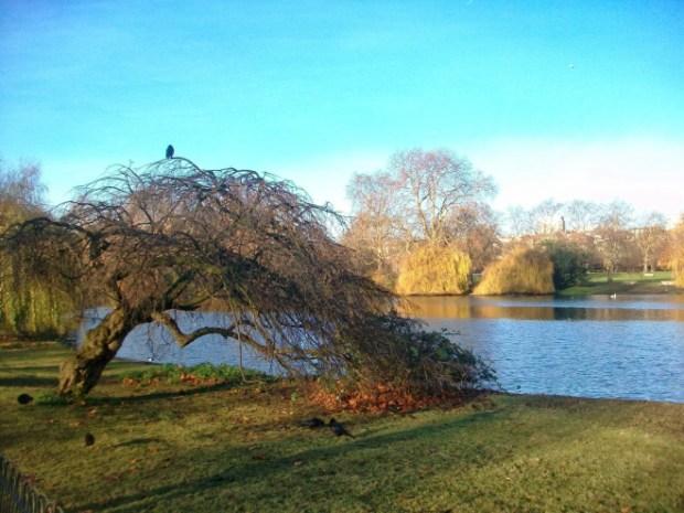 London Green Park.jpg