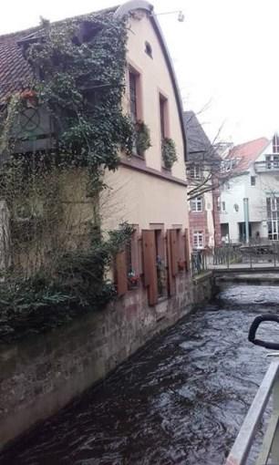 Freiburg (10)