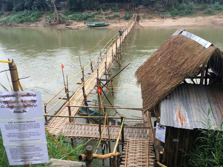 LP - Ponte Bamboo2