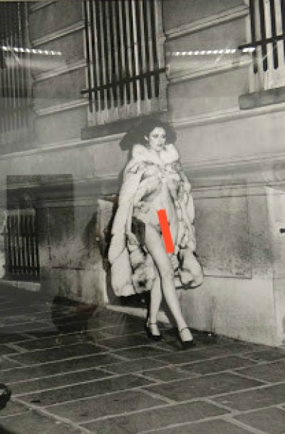 Nudity - Is it Shocking or just Real, Travel Realizations, Fotografiska, Helmut Newton's photographs