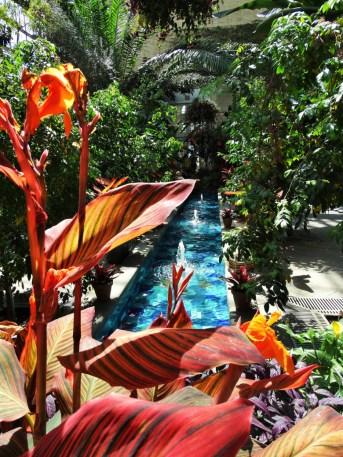 Springbrunnen im Botanischen Garten DC
