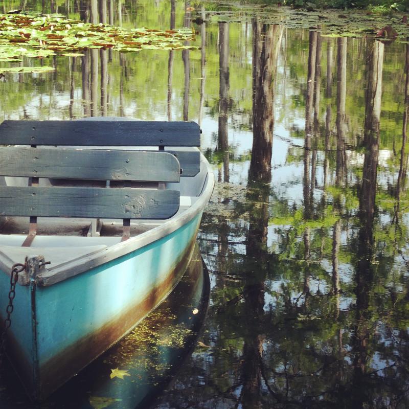 Boot am Steg Sümpfe Cypress Gardens South Carolina