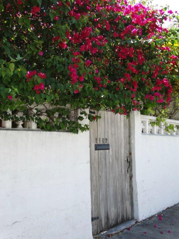 Hauseingang Key West