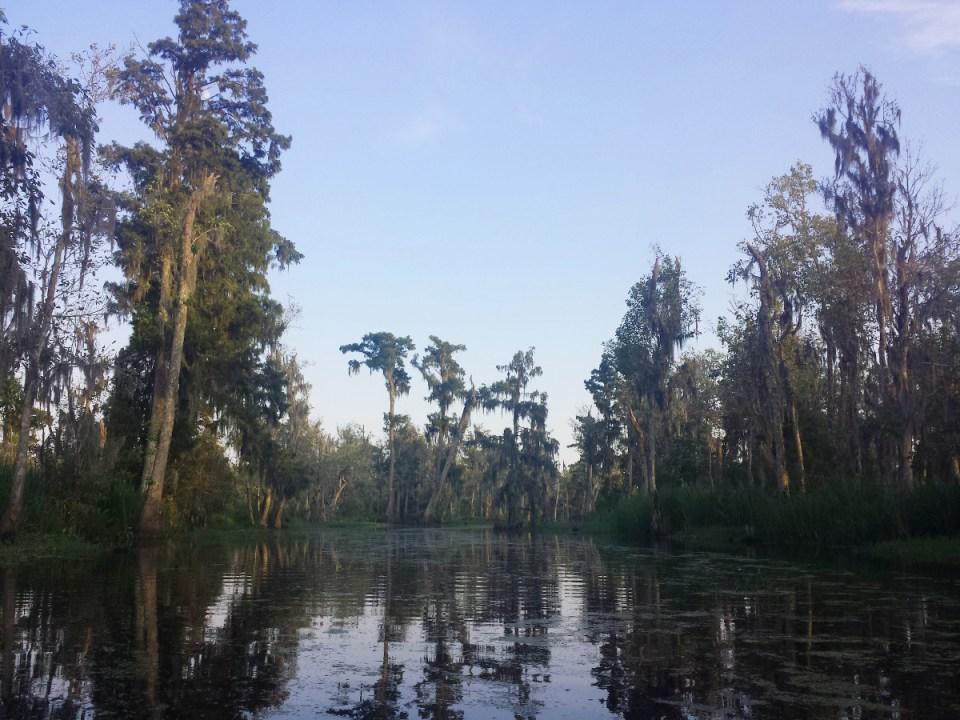 Bayou Nola