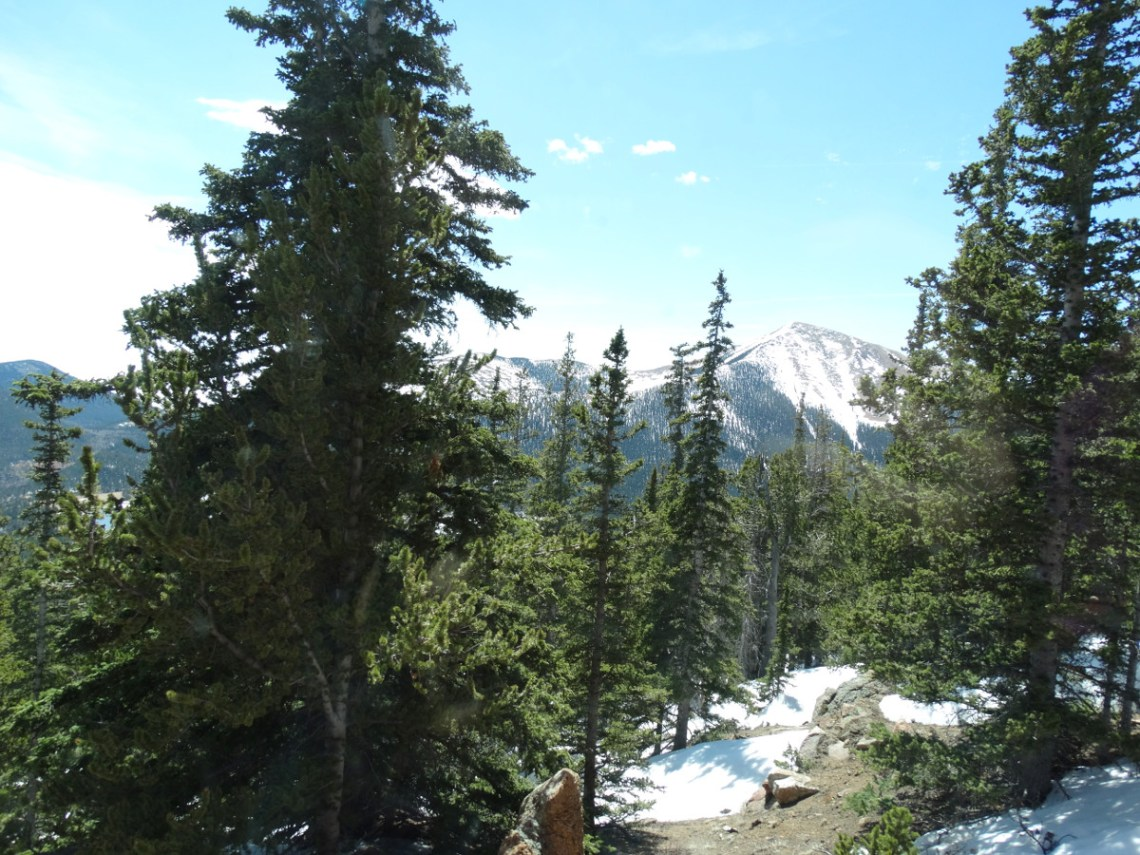Pikes Peak Berge und Wald