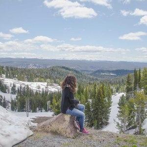 Ausblick auf die Berge Wyomings im Yellowstone Nationalpark