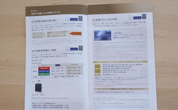 sfc_card.7