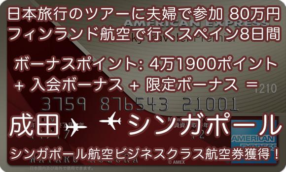 skytraveler_model_route2