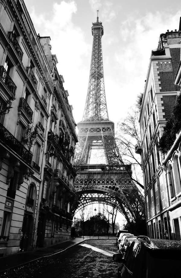 Paris Street with Eiffel Tower Images