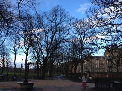 Rare sunny morning walk