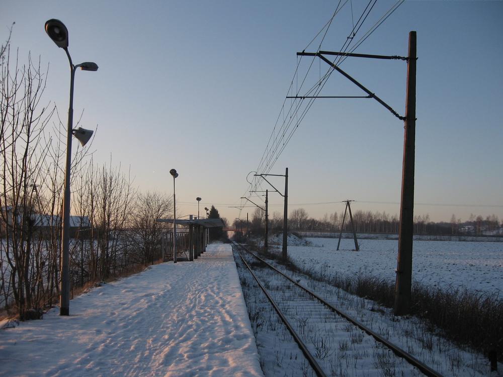 zimowa-odsłona