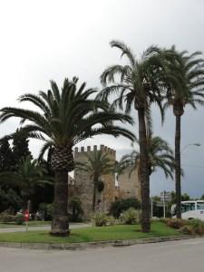 Europe- Spain - Majorca - 08