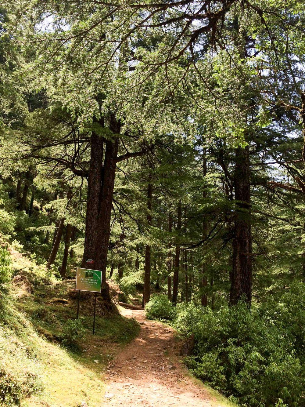 Eco Park Jageshwar