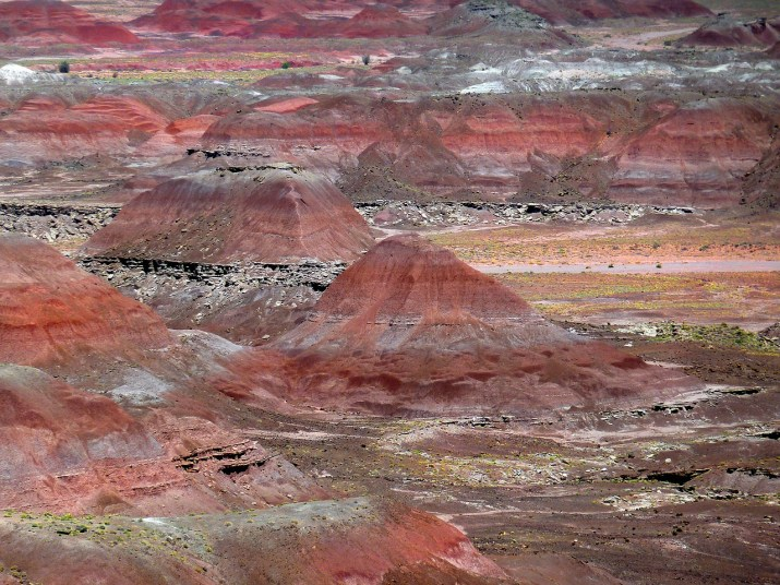 petrified-forest-55503_1280