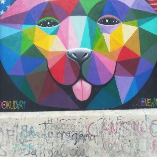 A graffiti wall in Lavapies Madrid. This image shows a cat with a multicoloured, kaleidoscopic face taking up the entire painting. The cat is sticking its tongue out.