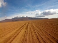Tyre tracks in the Atacama Desert