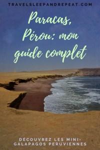 L'image de mon guide complet de paracas