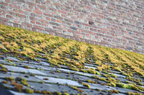 Moss is perfectly good roof material.