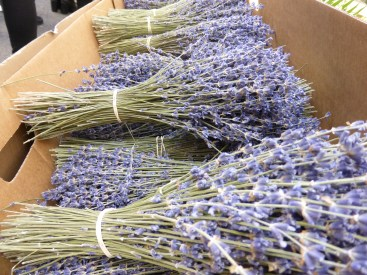 Lavender all over the market
