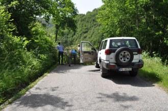 Montenegro, Helping, M9