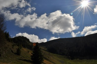 Romania, mountains, meadow