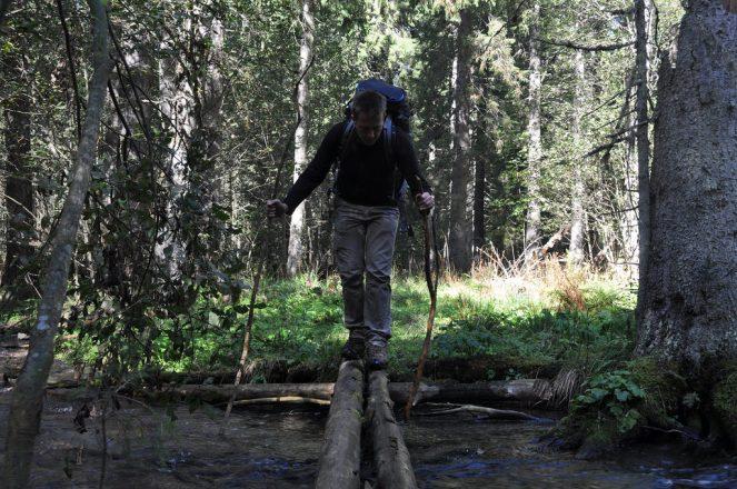 Hiking, bridge, stream