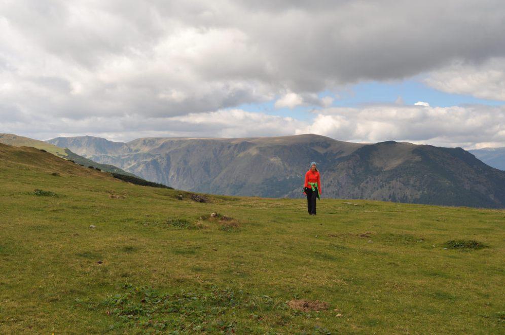 Alpine, meadow, Romania