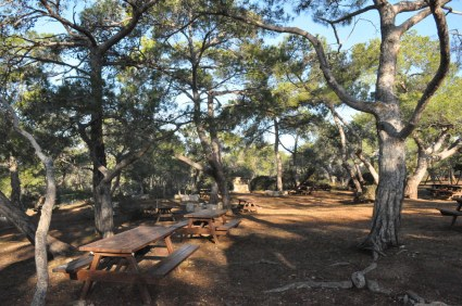 Cyprus, picnic, Pikni forest
