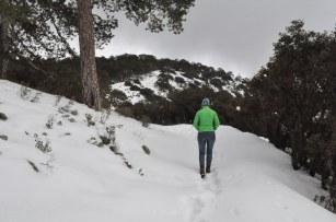 Cyprus, Troodos, Hiking