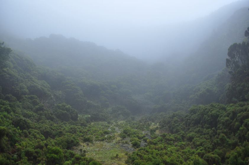 The crater above the cave.