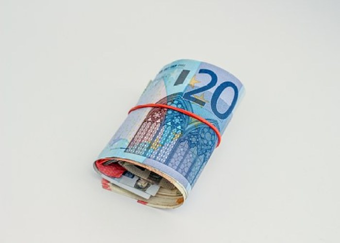 Roll of Euros to pay for travel