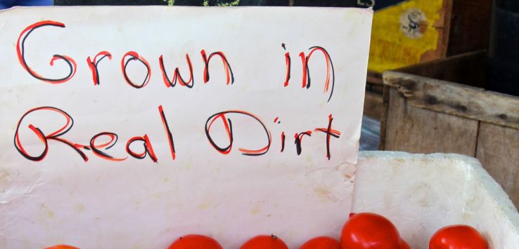 "Markets-Madison, WI-Tomatoes ""grown in real dirt"""