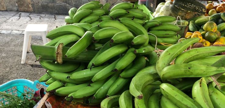 Markets-Martinique-Green bananas