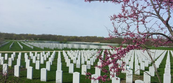 National Cemetery: Rows of headstones stretch for acres