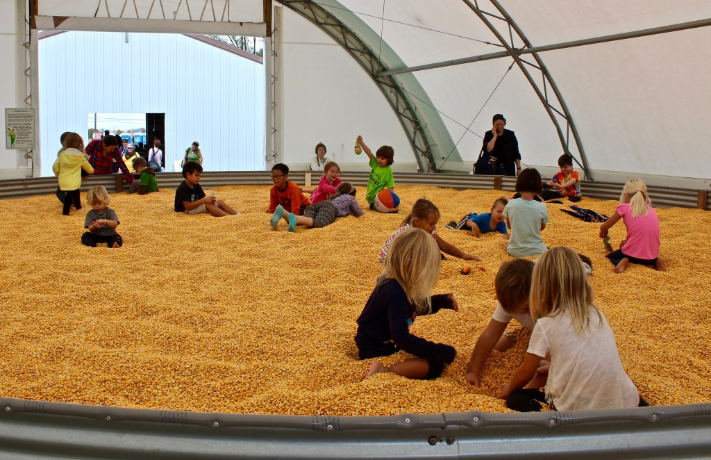 """Pumpkin patches and corn mazes: Activities for children include a giant """"corn box"""" for kids to scoop up and crawl in. (Photo by Suzanne Ball. All rights reserved.)"""