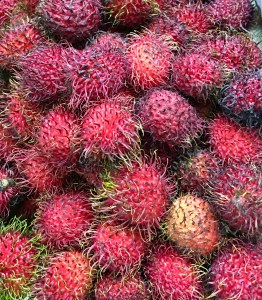 The rambutan isn't pretty, but peel off the skin and enjoy the delicious sweet fruit.