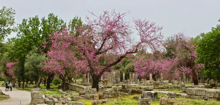 Olympia, Greece: Where the Olympics began and were held for over 1,000 years.