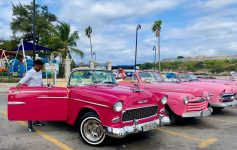 For an American in Cuba, the old cars are a highlight. Then you realize, they're everywhere!!