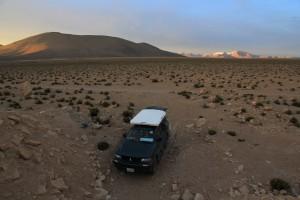 Bolivien_Westen_Lauca_025