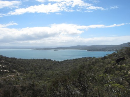 Hiking to the Wineglass Bay Lookout