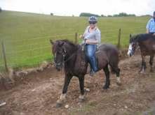 153 Good preparation for my horseriding weekend in Wales in 2 weeks!